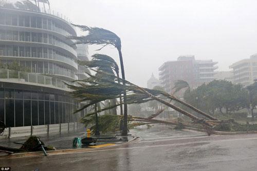 Mỹ tổn thất 290 tỉ USD vì 2 siêu bão - Ảnh 1.