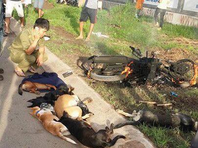 Nghi trộm chó, 2 thanh niên bị đánh và đốt xe - Ảnh 1.