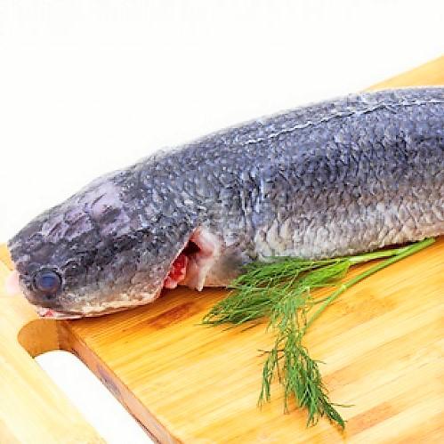 Cá lóc nhồi thịt sốt cà: Món ngon khó cưỡng - Ảnh 2.