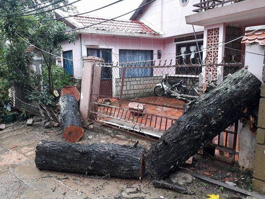 Lâm Đồng: 2 người chết, nhiều nơi bị cô lập do bão - Ảnh 1.