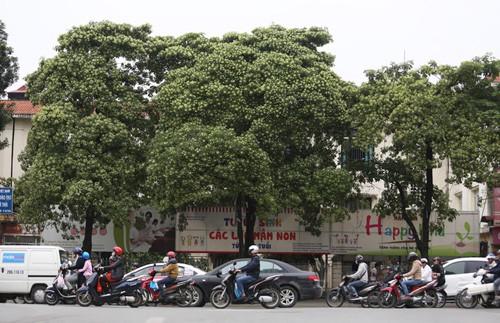 Lý do khách Mỹ ghen tỵ với người Việt - Ảnh 1.