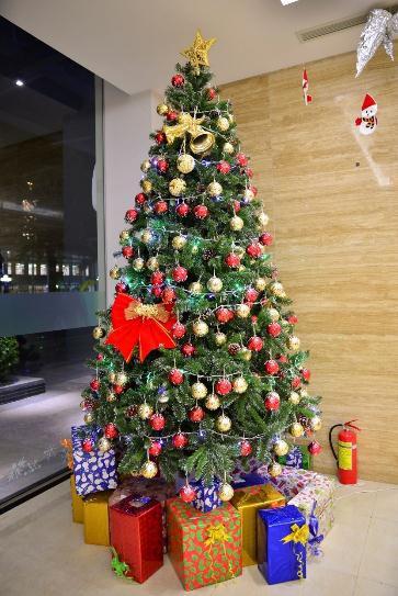 Đại tiệc Giáng sinh Đỉnh - Chất - Tuyệt tại công viên ven sông lớn nhất TP HCM - Ảnh 3.
