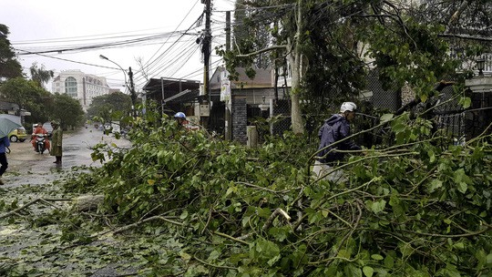 Lâm Đồng: 2 người chết, nhiều nơi bị cô lập do bão - Ảnh 18.