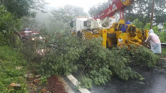 Lâm Đồng: 2 người chết, nhiều nơi bị cô lập do bão - Ảnh 8.
