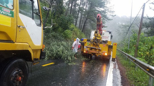 Lâm Đồng: 2 người chết, nhiều nơi bị cô lập do bão - Ảnh 9.