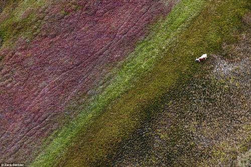 """""""Ngất lịm"""" trước cảnh đẹp hoang dã ở Nam Phi"""