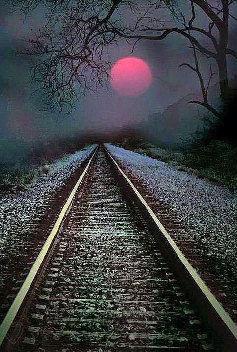 Cuộc đời như một chuyến tàu - Ảnh 2.
