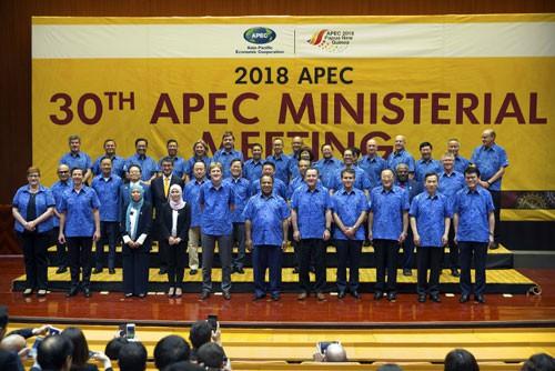 Dấu ấn Việt Nam sau 20 năm gia nhập APEC - Ảnh 1.