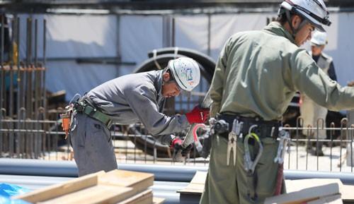 Nhật Bản: Tranh cãi nảy lửa vì lao động nhập cư - Ảnh 1.