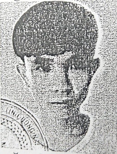 Gã thanh niên mang nhiều vỏ bọc ở Đồng Nai - Ảnh 1.
