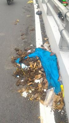 Quá nhiều rác trên cầu vượt ở Gò Vấp - Ảnh 2.