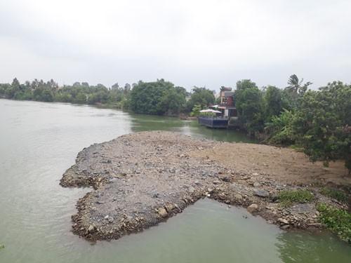 Tiếng kêu tuyệt vọng từ sông Đồng Nai - Ảnh 1.