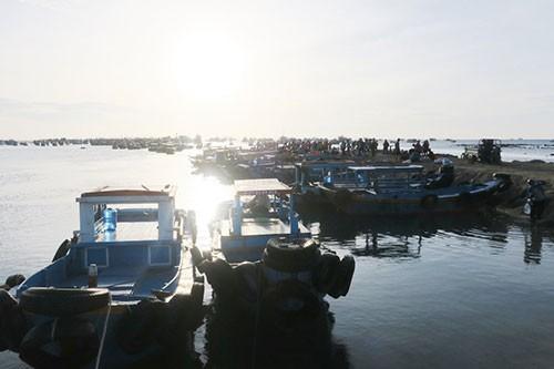 Sướng mắt với chợ cá tươi roi rói vào buổi sớm mai ở Bãi Phủ - Ảnh 7.