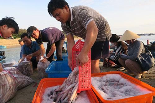 Sướng mắt với chợ cá tươi roi rói vào buổi sớm mai ở Bãi Phủ - Ảnh 2.