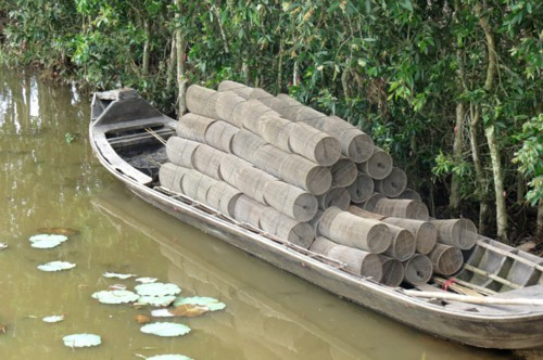Mê mắt với những chiếc lọp đầy cá mùa nước nổi - Ảnh 2.