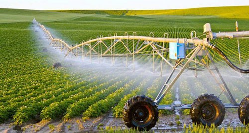 Kiều bào về quê đầu tư nông nghiệp thông minh - Ảnh 1.