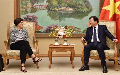 EC ấn tượng với nỗ lực gỡ bỏ thẻ vàng của Việt Nam - Ảnh 1.