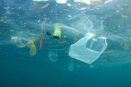 Hố rác vô tận trong lòng đại dương - Ảnh 1.