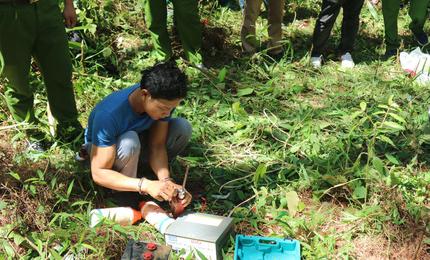 Bắt đối tượng đầu độc hơn 10 ha rừng thông rồi lẩn trốn ở TP HCM - Ảnh 1.