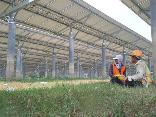 Tấm pin điện mặt trời, xử lý sao? - Ảnh 1.