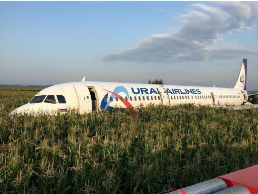Máy bay tông vào đàn chim, 23 người bị thương - Ảnh 2.