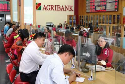 Agribank nói gì về việc hai người dân bỗng dưng mắc nợ 12,6 tỉ đồng? - Ảnh 1.