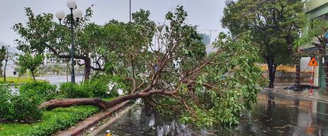 Phú Yên: Bão số 9 hiện giảm còn cấp 10 - Ảnh 6.