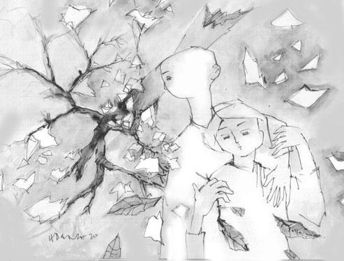 Vườn sau bão - Ảnh 1.
