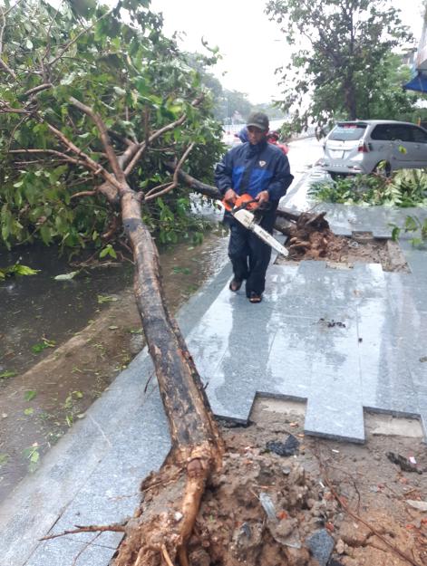 Bão số 12 áp sát bờ Phú Yên, Khánh Hòa, mưa rất to - Ảnh 5.
