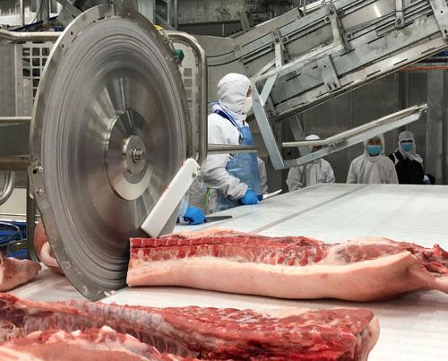 Giá thịt heo Tết sẽ tăng? - Ảnh 1.