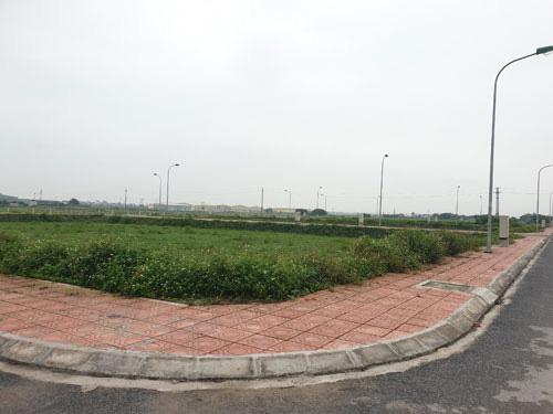 Đường Nhuệ thao túng đấu giá đất ở Thái Bình - Ảnh 1.