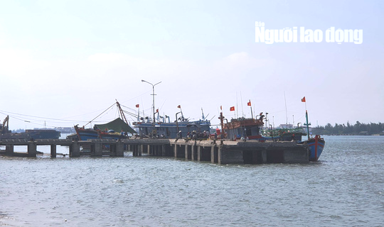 Nhóm 5 ngư dân Quảng Ngãi hỗn chiến với thương lái, 1 người bị thương - Ảnh 1.