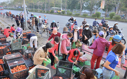 """CLIP: Hàng trăm người dân đổ xô đi """"giải cứu"""" nông sản Hải Dương - Ảnh 2."""