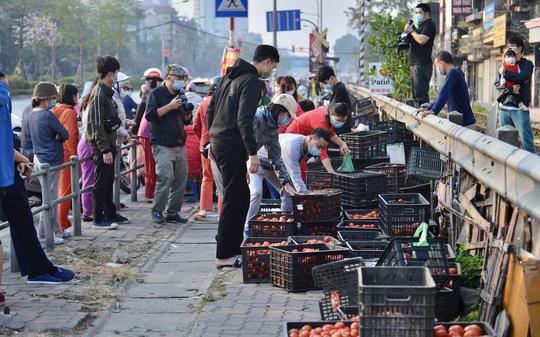 """CLIP: Hàng trăm người dân đổ xô đi """"giải cứu"""" nông sản Hải Dương - Ảnh 5."""