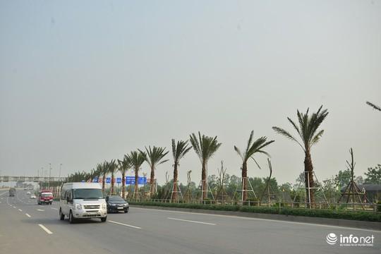 Những ngày gần đây, người dân có nhu cầu đi lại trên Đại lộ Võ Nguyên Giáp (tuyến đường dẫn từ trung tâm thành phố Hà Nội ra Cảng hàng không Quốc tế Nội Bài) không khỏi bất ngờ bởi hàng cây được trồng thẳng tắp.