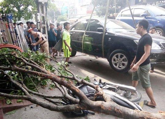 Nhờ có cây xanh và người dân nhanh chóng nâng ô tô nên cô gái đã được cứu sống