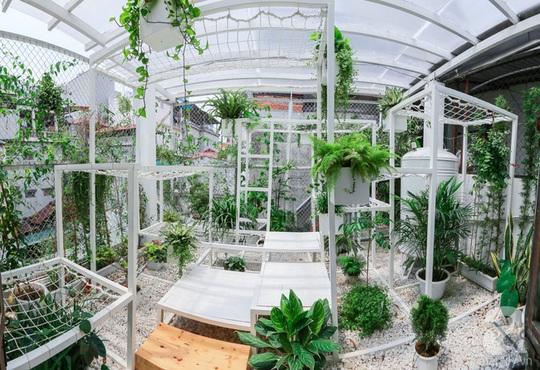 Khu vườn tuyệt đẹp có chức năng điều hoà - Ảnh 1.