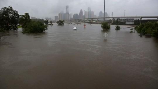 """Mỹ: """"Đảo kiến lửa"""" xuất hiện trong bão Harvey - Ảnh 3."""