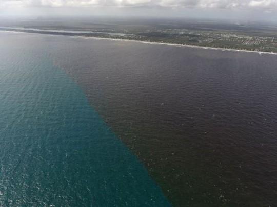Bão Irma tan từ lâu, biển Florida vẫn chưa đổi lại màu - Ảnh 2.