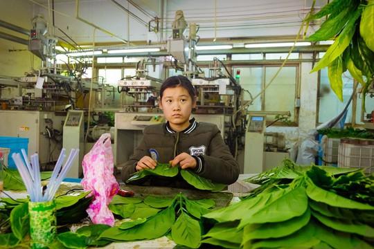Khu chợ bán đồ Made in China lớn nhất thế giới - Ảnh 11.