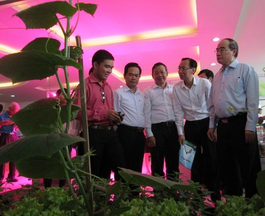 TP HCM tìm hướng phát triển HTX nông nghiệp - Ảnh 1.