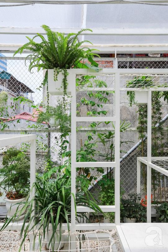 Khu vườn tuyệt đẹp có chức năng điều hoà - Ảnh 12.