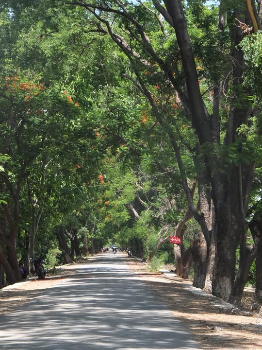 Myanmar: Đến, soi và mỉm cười nhẹ nhõm - Ảnh 15.