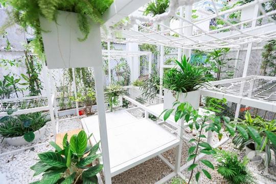 Khu vườn tuyệt đẹp có chức năng điều hoà - Ảnh 16.