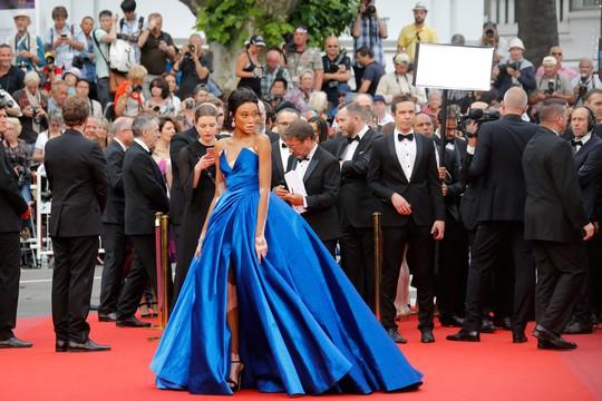 Người mẫu bạch biến tự tin khoe dáng tại Cannes 70 - Ảnh 1.