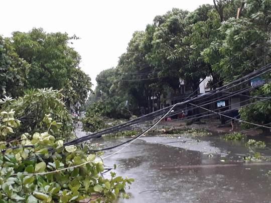 Bão số 2 vào đất liền: Cây đổ, mất điện, nhà tốc mái - Ảnh 18.