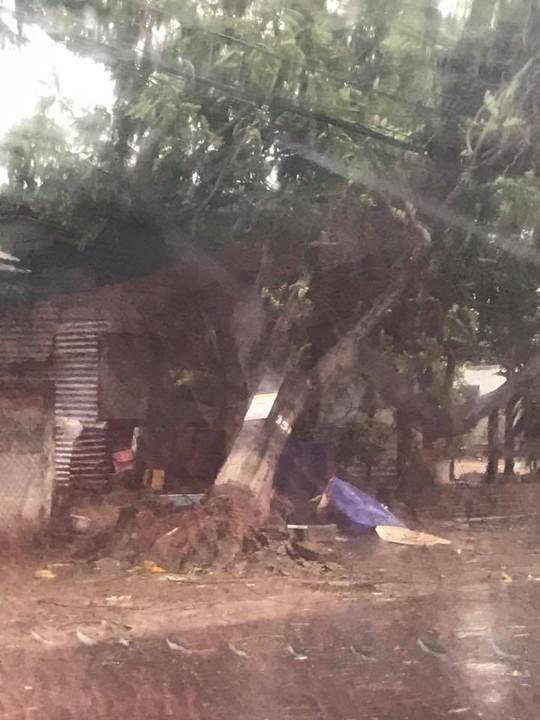 Gần 50 năm sống ở Nha Trang mới thấm thía bão - Ảnh 13.