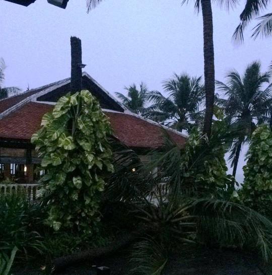 Gần 50 năm sống ở Nha Trang mới thấm thía bão - Ảnh 12.