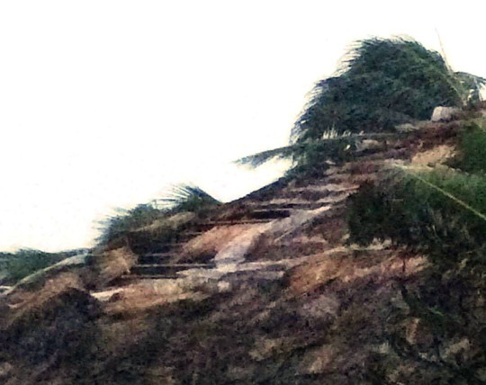 Gần 50 năm sống ở Nha Trang mới thấm thía bão - Ảnh 9.