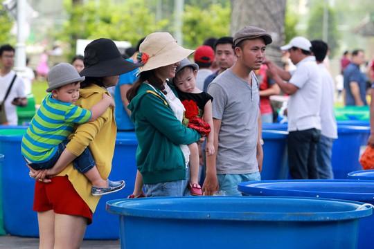 Tưng bừng hội thi cá Koi tại Thảo Cầm Viên - Ảnh 7.